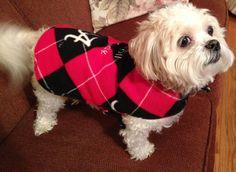 Dog Coat Fleece Alabama  Argyle  Black Red by RoseRidgeCreations, $24.99
