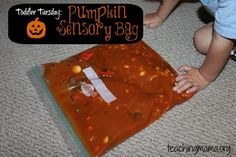 Pumpkin Sensory Bag from Teaching Mama