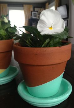 Color-Dipped Painted Pots from The Loud and Clear