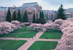 University of Washington http://meetmycollege.com/Home/College/1325