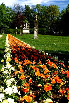 Flowers, Munich, Germany