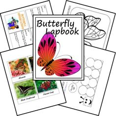 Butterfly Lapbook FREE Printables