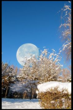 *Blue sky, moons out~
