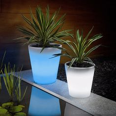"Solar-Powered, Glowing Flower Pot. Paint flower pots with Rustoleum's ""Glow in the Dark"" paint. Absorbs sunlight by day & glows at night"