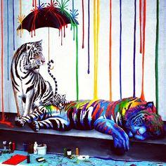 Carlsbad Mural #streetart #tigers #mural #paint #colors