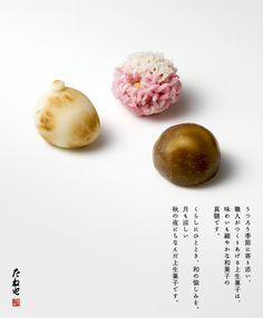 上生菓子 秋の夜長 Namagashi