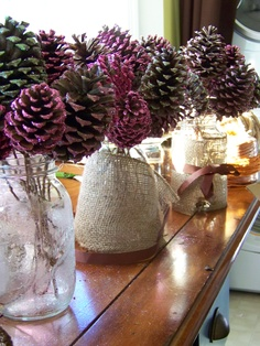 DIY pinecone bouquets for our upcoming wedding/reception using mod podge, glitter, natural covered wire for the stems, hot glue to adhere the stems to the pinecones, & of course different sizes of pinecones.  They are in mason jars wrapped in burlap with a ribbon.  There's still some work to do on them for them to be complete.