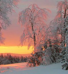 Sunrise after a late 2013 Ice Storm in Monroe ME. Absolutely stunning!!