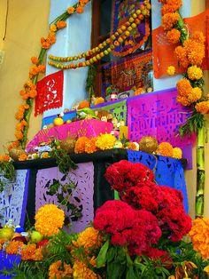 #DidelosMuertos in #Oaxaca #Mexico #altar #ofrenda #marigolds