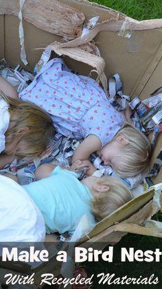 nest bird, birds preschool theme, bird activities toddlers, bird nests