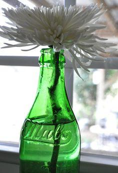 Mulo bottle vase