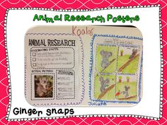 great animal research project idea