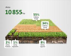agricultur infograph, illustrations, annual report, data, agriculture, agricultur infogrph, egorov, anton, design