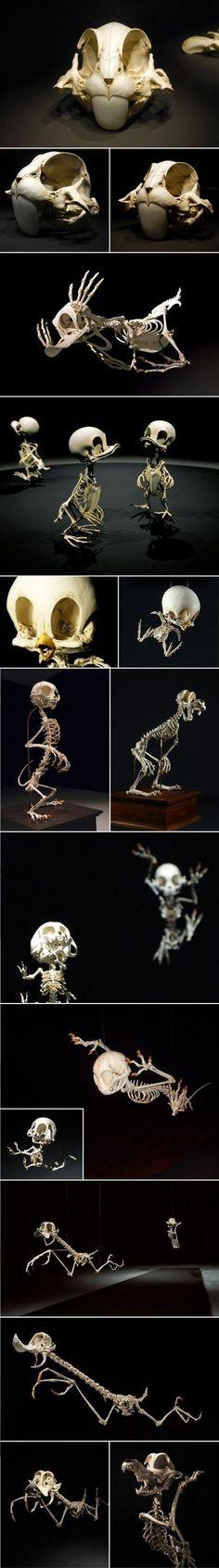 Skeletons of Disney Characters!