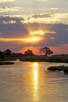 Mana Pools. Zambezi River. Northern Zimbabwe
