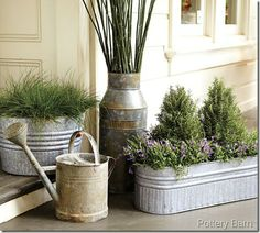 galvanized planters for herbs..