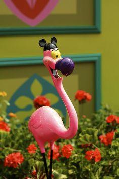 mickey flamingo