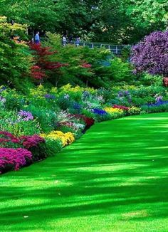 The beautiful garden of somewhere (my guess: Butchart Gardens in Brentwood Bay, British Columbia, Canada) Modern Gardens, Beautiful Garden, Dream Yard, Interior Garden, Beauti Garden, Vancouver Island, Side Yards, Modern Garden Design, British Columbia