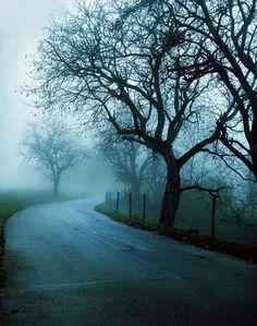 A Nice Little Fog