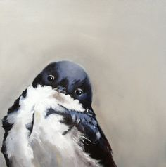 Young swallow by Tracy McCulloch oil on canvas young swallow