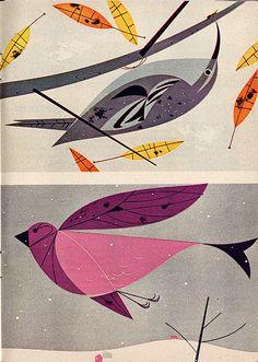 Charley Harper's Birds, Gorgeous!