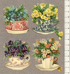 Blommor-i-thekoppar-4-st by Cilla in Sweden, via Flickr