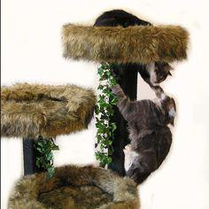 Image Detail for - CAT TREES Designer Cat Beds Top Modern Cat Trees Condos Unique Cat ...