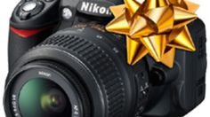 How-to-get-the-most-out-of-your-new-nikon-d3100