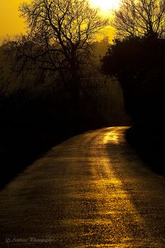 Golden Hour, Road