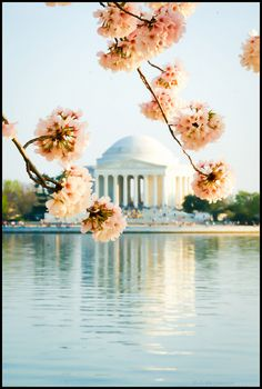 Jefferson Memorial, Washington DC  http://www.vacationrentalpeople.com/vacation-rentals.aspx/World/USA/District-of-Columbia/Washington