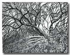 scratchboard-art-in-san-felipe.jpg (547×432)
