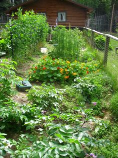 Our garden. More properly, it's my wife's garden. But I do help her consume what it produces.  —Rod Boyce, managing editor