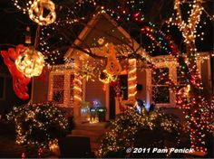 4 Places to See Austin's Christmas Lights | Things to Do in Austin, Texas
