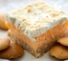 Orange sherbert dessert.