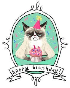 Happy birthday, crumpy cat