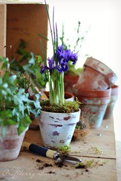 Craftberry Bush - three ways to age a terracotta pot