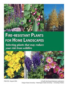 Fire-resistant plants for home landscapes : selecting plants that may reduce your risk from wildfire by Amy Jo Detweiler and Stephen Fitzgerald, a Pacific Northwest Extension publication.