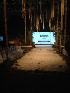 The catwalk for the Asian Bride Live fashion show. The staging and decor had a magical, woodland feel and really set the scene for amazing fashion which we were treated too.