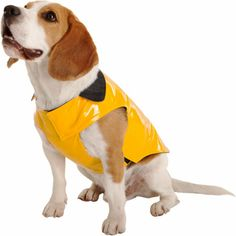 "Barneys New York dog rain slicker, $124: ""This rain slick is perfect for my beloved dog Lovern. I plan on taking her to England in 2014 and this will surely keep her dry.  She'll also be getting loads of treats…"""