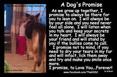 A Dog's Promise... So true!  Dogs are such amazing companions & friends!