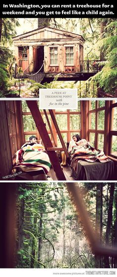 Treehouse Point, Washington. Why have I never heard about this?! George would love this... Maybe a good 25th birthday getaway?