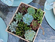 Succulent Table Centerpiece.  Use succulents in planter around umbrella?