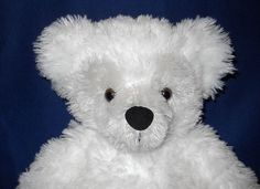 Pre Duffy Hidden Mickey Bear White Gray Plush Brown Eyes Walt Disney World Tag ~ SOLD to a Customer in JAPAN 12-16-13