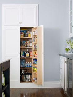Recessed Pantry Design - The built-in look of recessed-panel kitchen cabinets offers attractive, out-of-sight pantry storage. This recessed pantry design provides a combination of shelf and door storage for spices, dry goods, and small kitchen appliances. Note:  I don't want to give up wall space in kitchen.  I want to implement this down hallways for all types of storage.