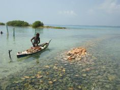 Belize- Photo by Marissa Warren, '13