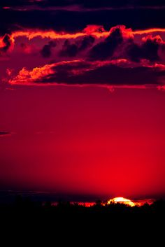 MAGNIFICENT Red View