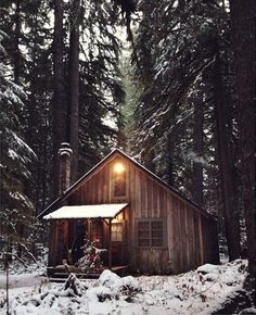 A wood cabin in the snowy woods