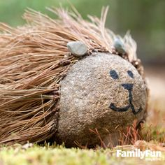 Rocky the Hedgehog: You'll want just the right rock to make this spiky guy, plus felt (to protect your table from scratches), tacky glue, dry pine needles, pinecones or pebbles, and black acrylic paint or a permanent marker.