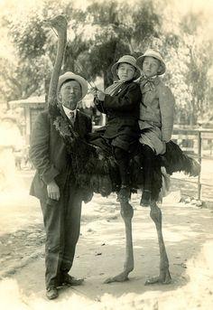 1920 - Joseph S. Pelt - Christoval -TX - Children riding an ostrich
