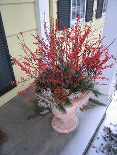 winter container garden